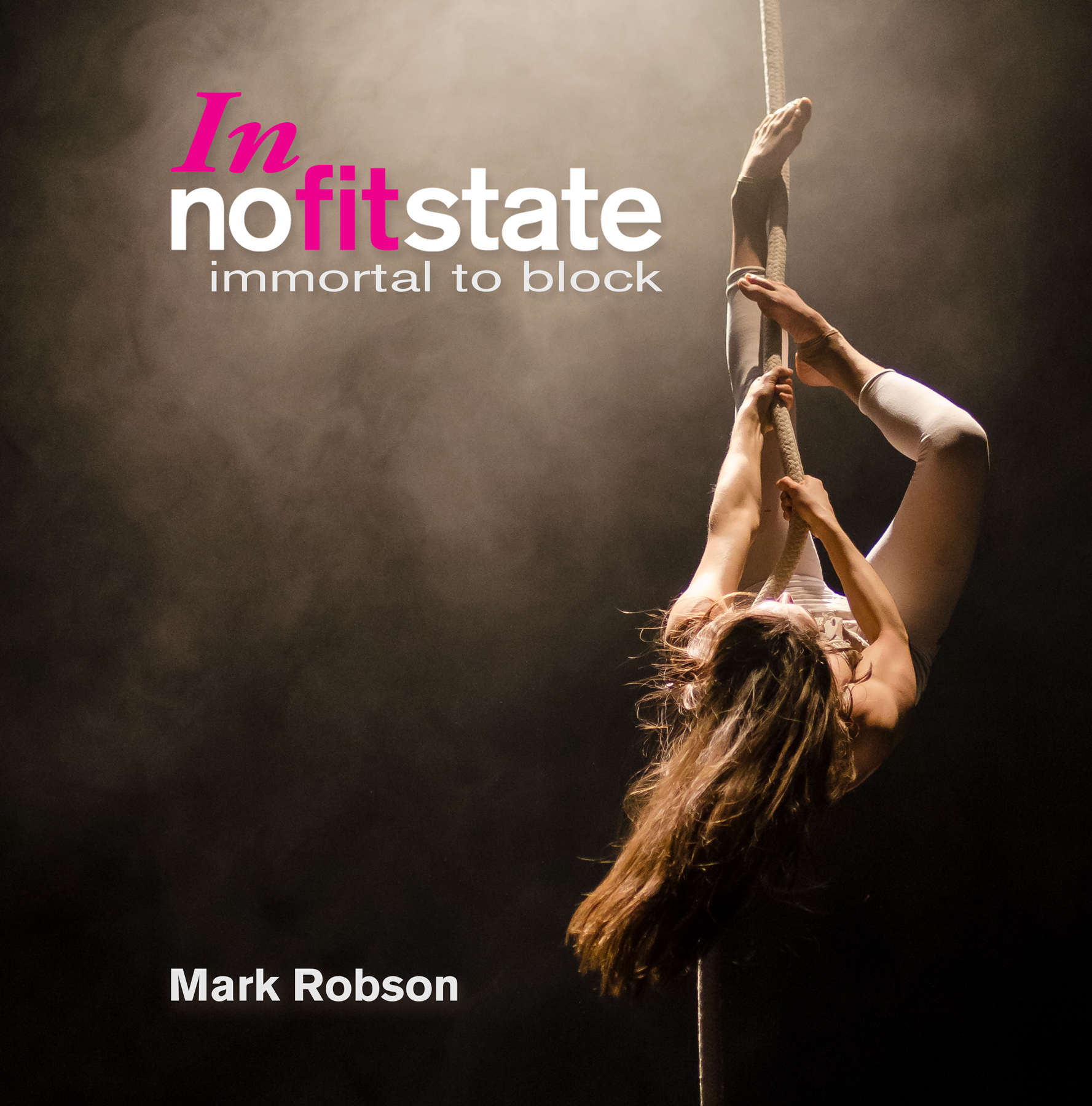 Front cover of In nofitstate